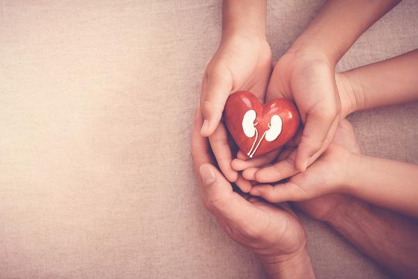 A doação de órgãos pode salvar muitas vidas. Fale com sua família sobre sua vontade de doar.