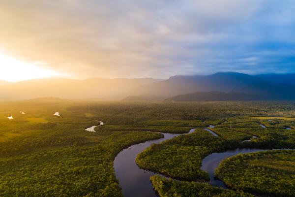 Floresta Amazônica no Brasil.