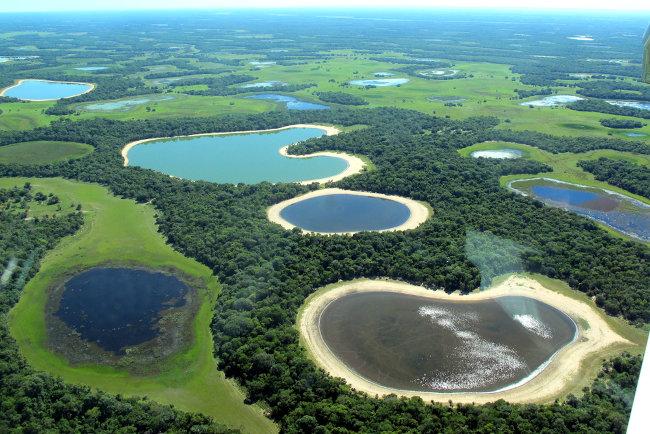 O Pantanal é a maior planície inundável do mundo.