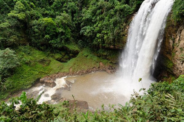 A floresta ombrófila densa é uma das subdivisões da Mata Atlântica. Nessas matas, devido ao relevo acidentado, é comum a presença de cachoeiras.