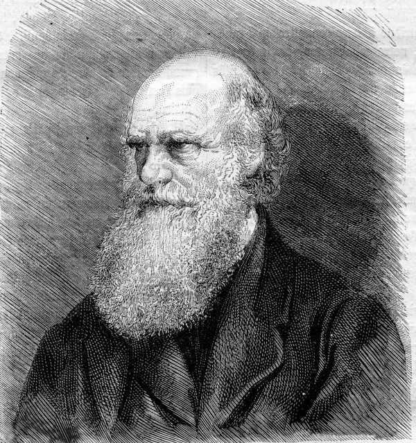 A teoria da evolução proposta por Charles Darwin é conhecida por darwinismo.