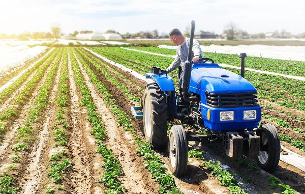 A agricultura moderna implementada pela Revolução Verde utiliza meios mecanizados para a produção, como os tratores.