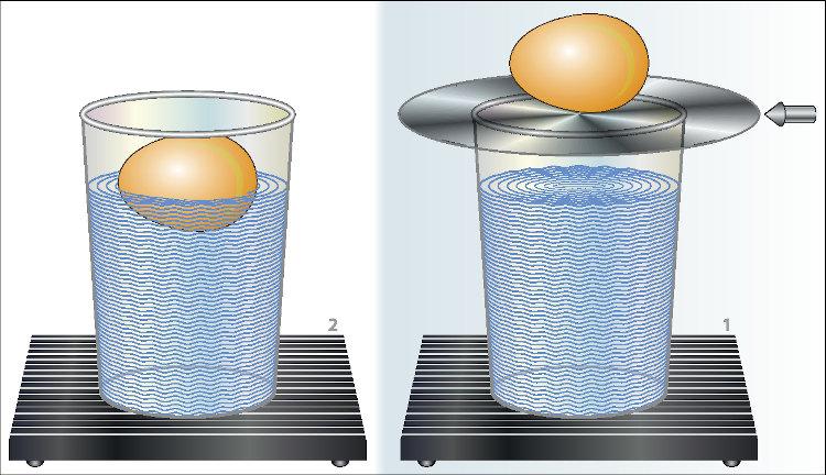 A inércia faz com que o ovo caia quando o disco é retirado rapidamente, isso porque o ovo tende a ficar em repouso.