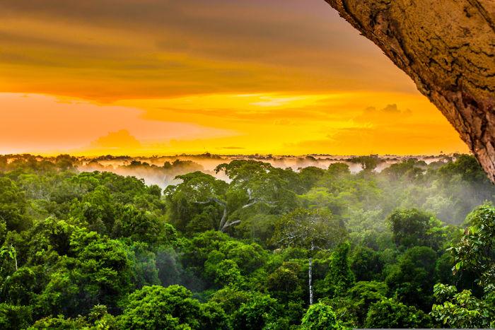 A Amazônia é o bioma mais devastado pelo desmatamento no Brasil.