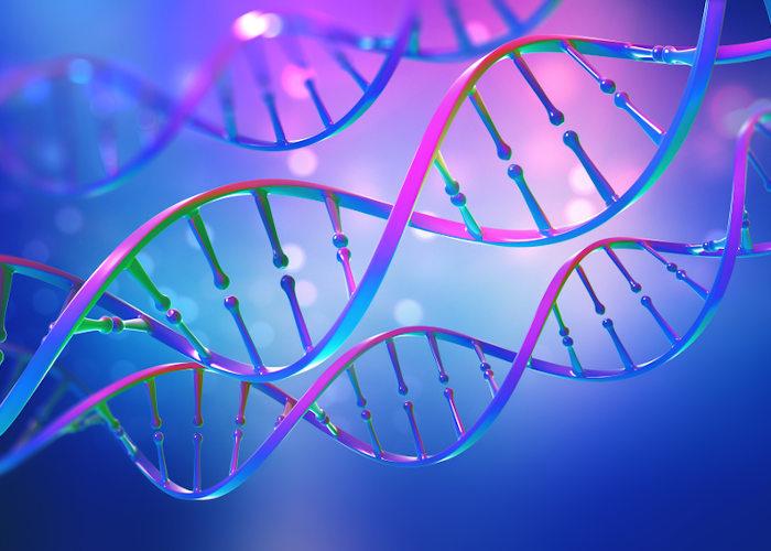A mutação pode provocar o surgimento de novos alelos e aumentar a variabilidade genética.