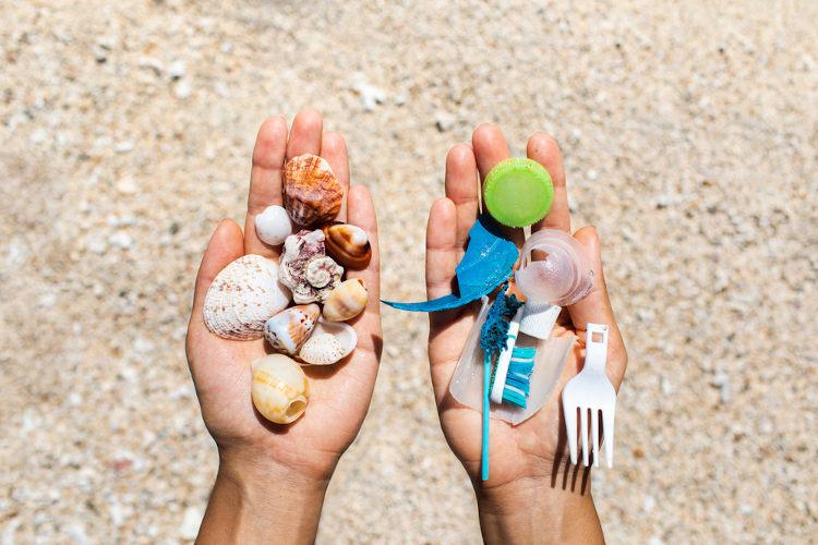 Ao lançar lixo na praia, estamos poluindo aquele ambiente e contribuindo para a morte de várias espécies.