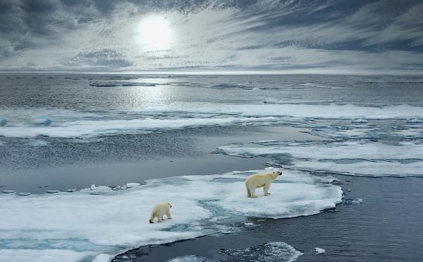 A presença de blocos de gelo é uma das características do Oceano Glacial Ártico. Ele está localizado em uma das regiões mais frias do planeta.