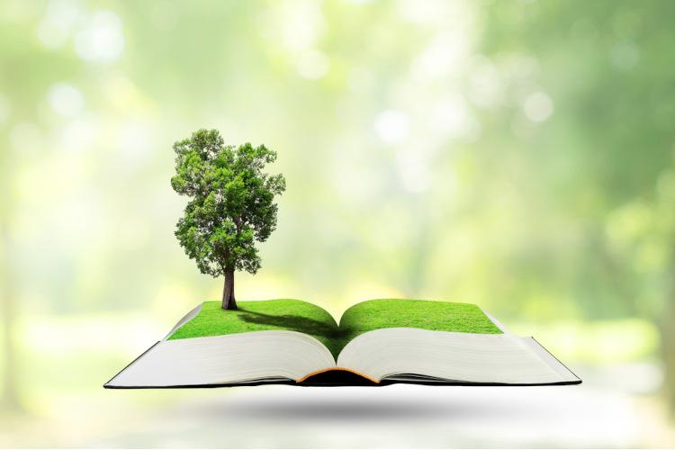 Estudar ecologia é fundamental para garantir boas notas na prova de Ciências da Natureza.