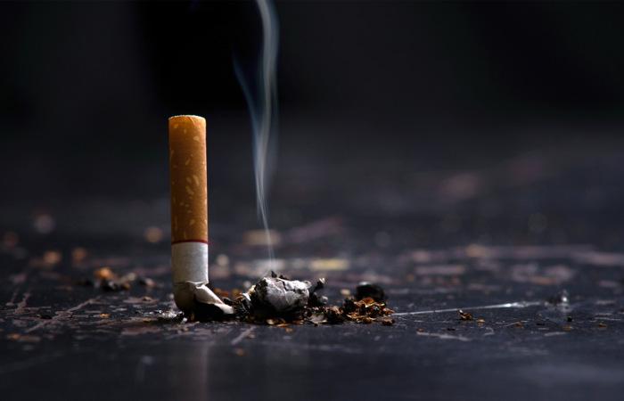 A nicotina é uma droga estimulante.