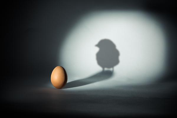 O que surgiu primeiro, a galinha ou o ovo? Essa pergunta popular é considerada um paradoxo.