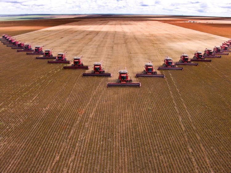 Fazenda de soja em Mato Grosso. A produção agrícola no Brasil é destaque mundial.[1]