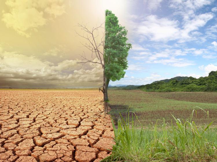 Mudanças climáticas podem provocar aumento de eventos climáticos prejudiciais, como secas prolongadas.