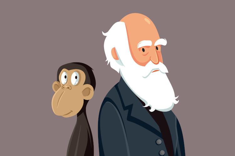 Apesar do que muitos pensam, Darwin nunca afirmou que o homem veio do macaco, e sim que temos um ancestral comum.