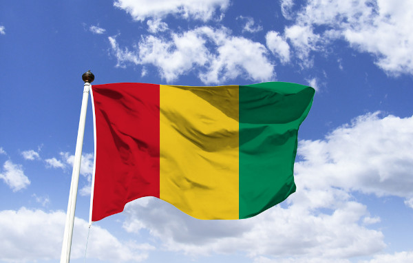 Bandeira da Guiné.