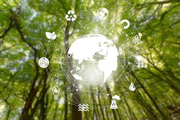 Investir em novas fontes de energia, reciclar e reduzir a poluição são alguns pontos importantes na preservação do meio ambiente.