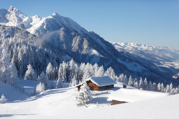 O inverno é a estação mais fria do ano.