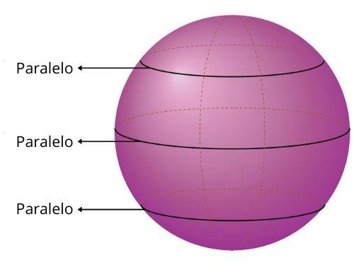 Esfera com a exemplificação de alguns paralelos
