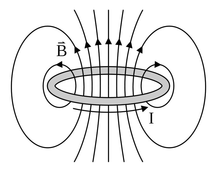 Campo magnético gerado por uma espira circular