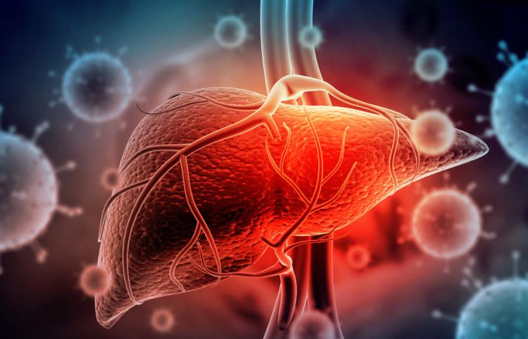 Hepatites virais são doenças provocadas por vírus e que afetam o fígado.