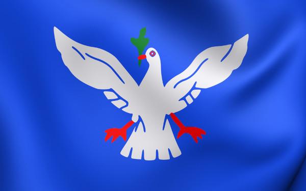 Bandeira de Salvador.