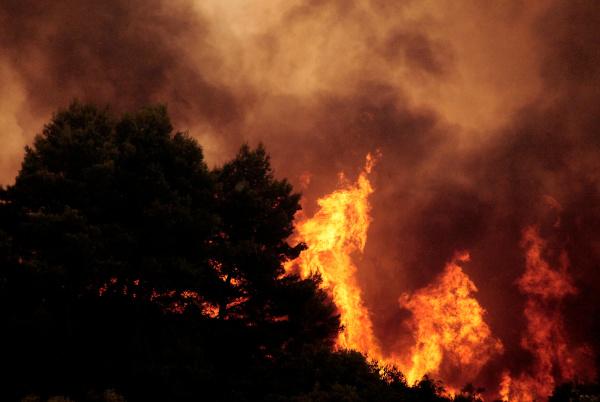 Floresta de Ouranoupoli em chamas, Grécia.[1]