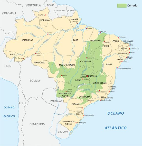 Mapa do Brasil com destaque para as áreas de ocorrência do Cerrado.
