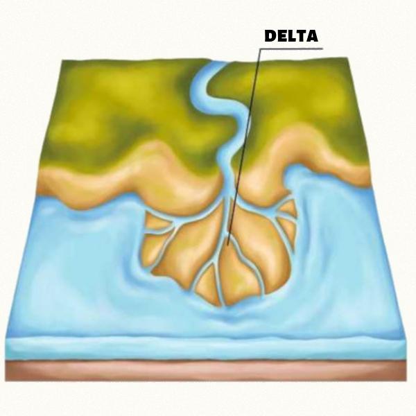 Foz em delta