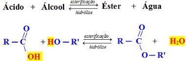esterificacao - Química Orgânica - As 8 Funções Orgânicas necessárias para fazer uma prova tranquila