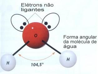 Geometria angular da molécula de água, que confere à substância uma série de propriedades características