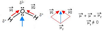 Momento dipolar da água – uma molécula polar