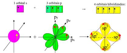 Hibridização Orbitais-hibridizados-sp3
