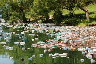 Freshwater Biome Natural Disasters