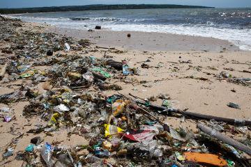 A poluição do litoral brasileiro é um dos principais problemas ambientais do país