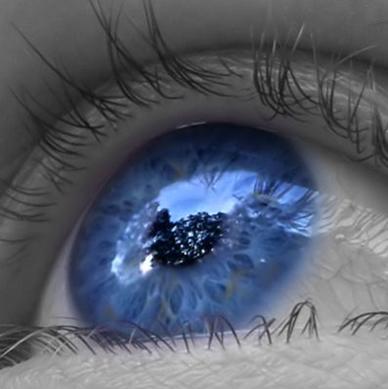 A visão humana é considerada um dos mais importantes sentidos do corpo humano