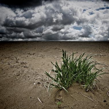 Tanto a desertificação quanto a arenização prejudicam o solo. Na imagem, a desertificação