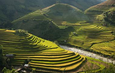 O terraceamento objetiva permitir a prática da agricultura em áreas íngremes