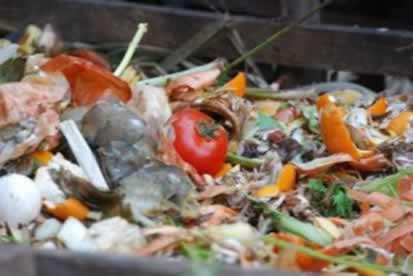 O lixo orgânico pode ser reciclado através da compostagem