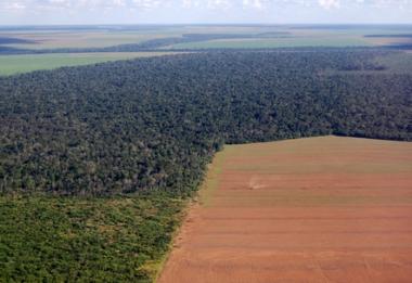 A ocupação da Amazônia vem expandindo o desmatamento da floresta