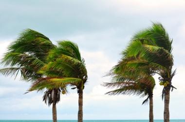 Os ventos ajudam a transformar a paisagem