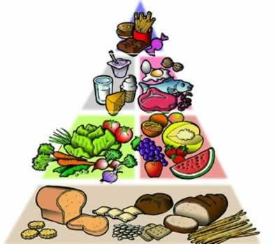 Os sais minerais são muito importantes para o bom funcionamento de nosso organismo