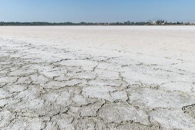 Exemplo de área em estágio avançado de salinização do solo