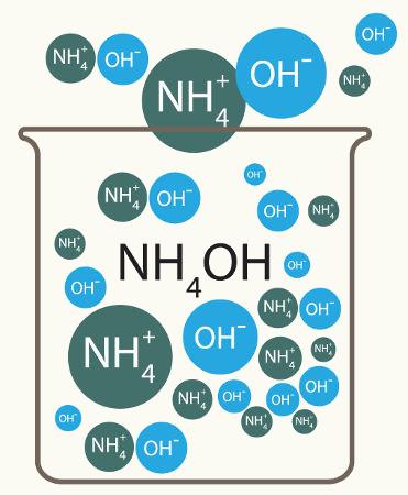 Dissociação do hidróxido de amônio em água