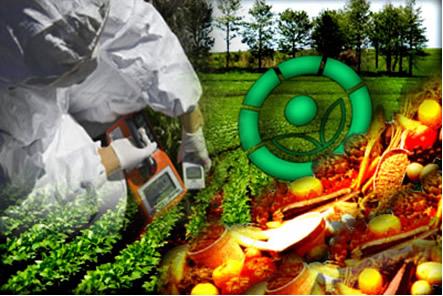 Entre as aplicações benéficas da radioatividade está a sua utilização na agricultura