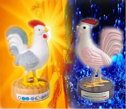 O galinho do tempo, por meio do equilíbrio químico, prevê se vai ou não chover