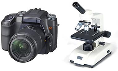 A câmera fotográfica e o microscópio composto são instrumentos ópticos que têm por função captar e ampliar imagens de objetos