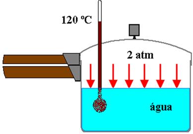 A temperatura no interior da panela de pressão pode chegar a 120 ºC e a pressão a 2 atm