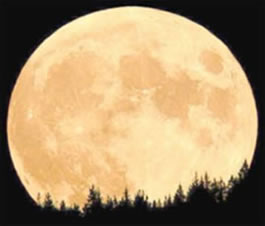 A Lua embeleza as noites