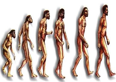 Ilustração mostrando a evolução do Homem.