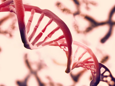 Mudanças que ocorrem ao acaso no DNA são chamadas de mutações