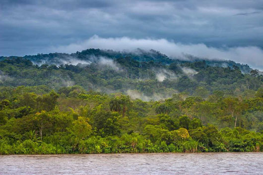 Processo de evapotranspiração na Floresta Amazônica
